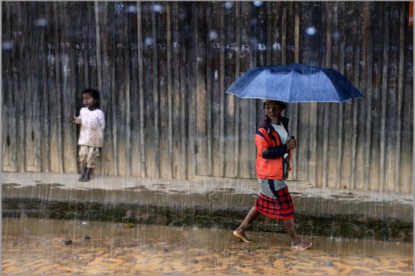 Pluie Tropicale, Alain Muzet