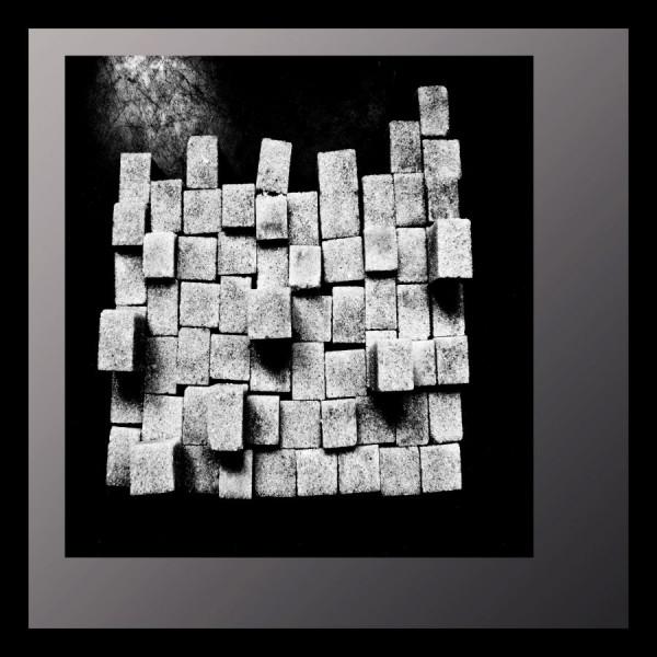 Présence de la forme, Roger Bourdeau