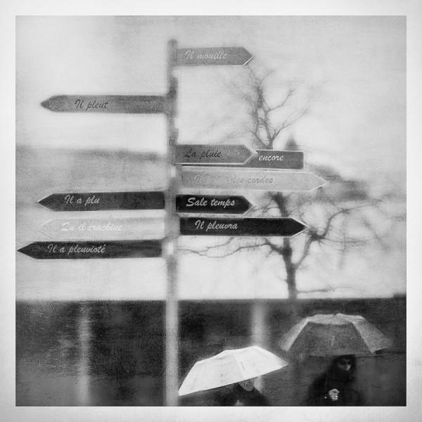 Pleuvoir, Fabienne Benard-Fluret