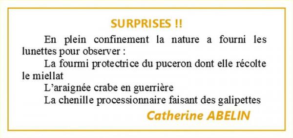 EXPO  CATHERINE ABELIN