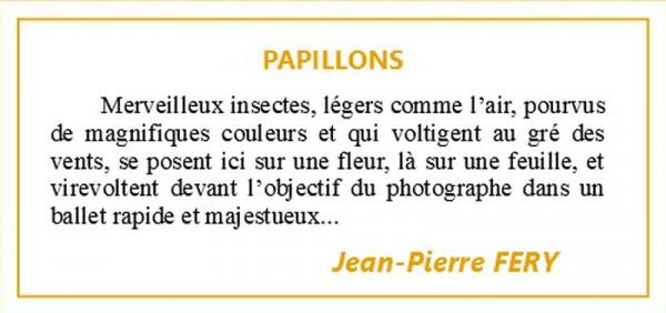 EXPO JEAN-PIERRE FERY