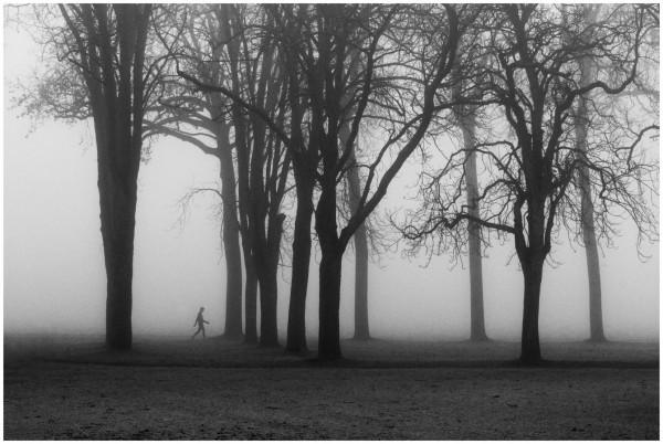 Alone in nature, Claude Decoray, 2ème/523