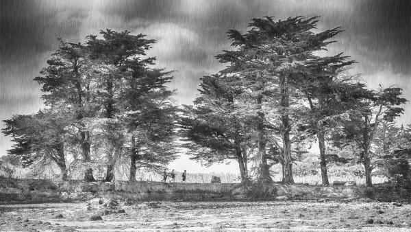 Soleil ou pluie l'île aux moines, Sabine Neveu, 62ème/461