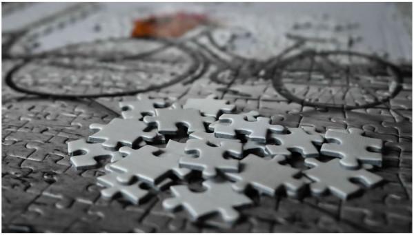 Puzzle, Emilie Choquet, 65ème/475