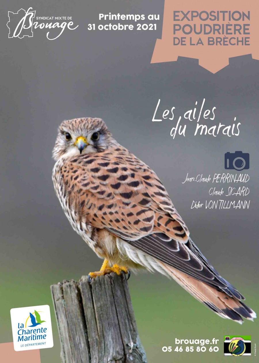 Exposition Photographique à Brouage « Les ailes du marais »