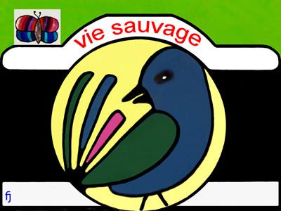 Le bureau et le logo de VIE SAUVAGE